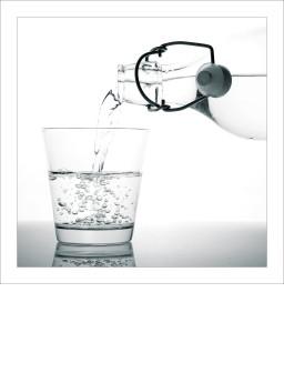 Wasser ist für Menschen, Tiere und Pflanzen lebenswichtig.