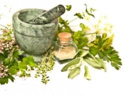 Pflanzenextrakte für Phytopharmaka